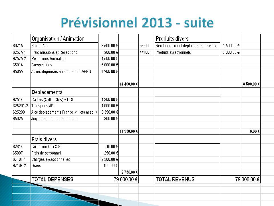 Prévisionnel 2013 - suite