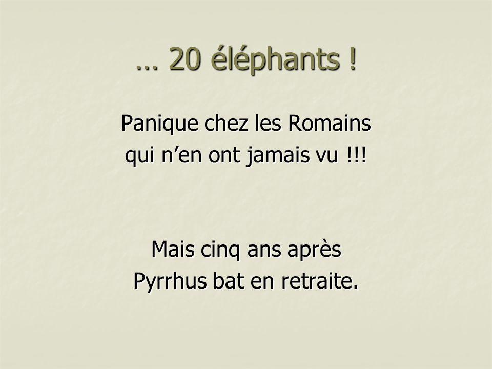 … 20 éléphants ! Panique chez les Romains qui n'en ont jamais vu !!!