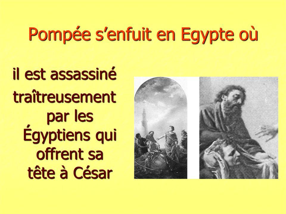 Pompée s'enfuit en Egypte où