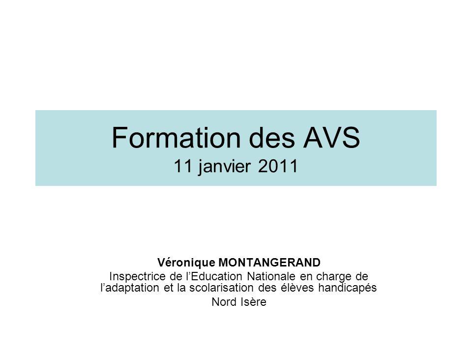 Formation des AVS 11 janvier 2011
