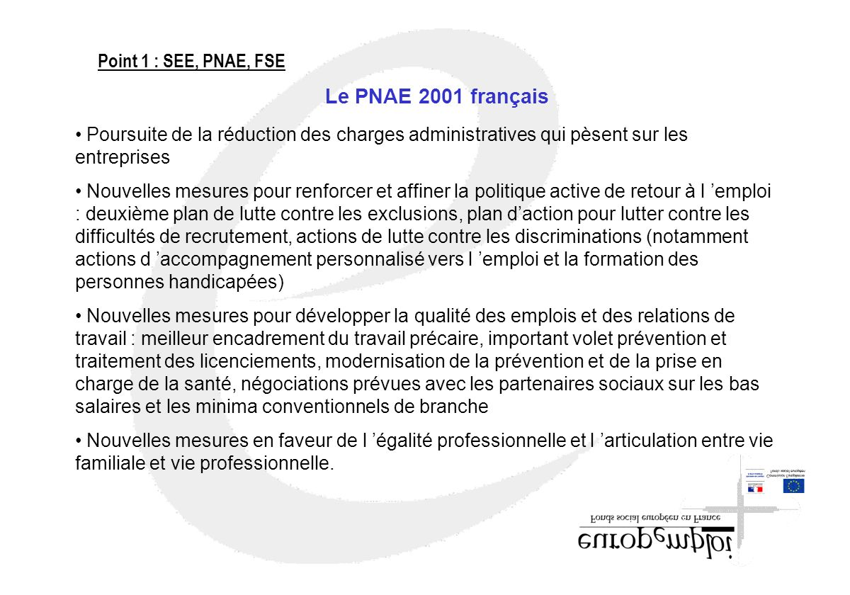 Le PNAE 2001 français Point 1 : SEE, PNAE, FSE