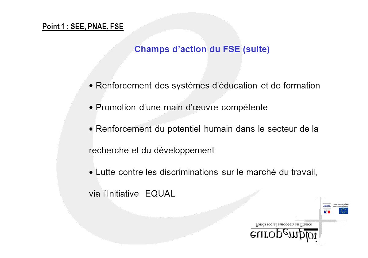 Champs d'action du FSE (suite)