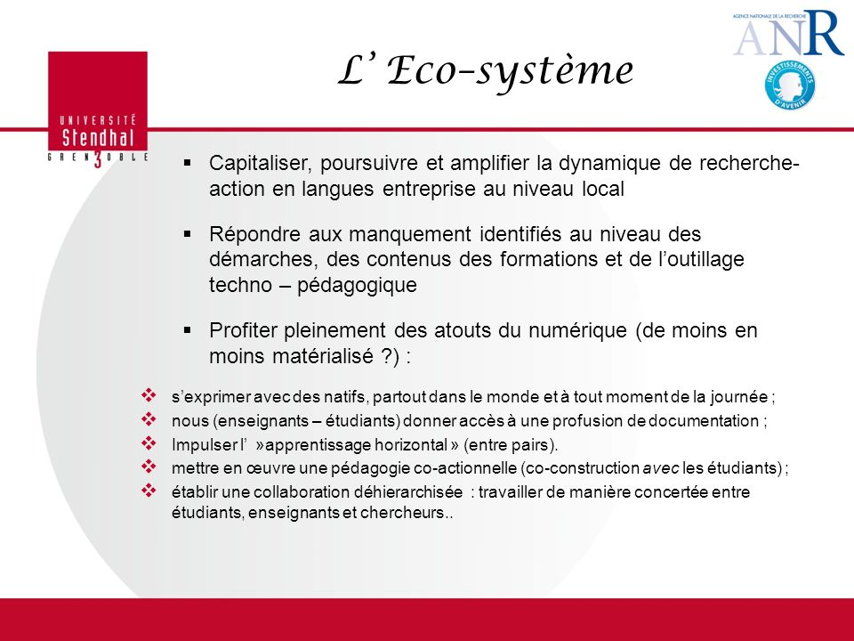 L' Eco–système Capitaliser, poursuivre et amplifier la dynamique de recherche- action en langues entreprise au niveau local.