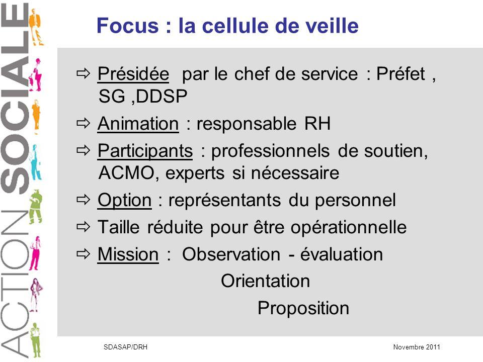 Focus : la cellule de veille