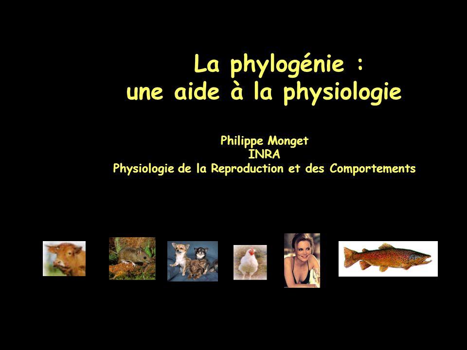 La phylogénie : une aide à la physiologie
