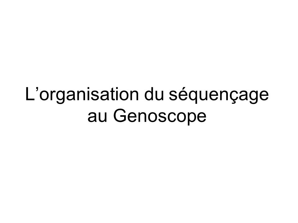 L'organisation du séquençage au Genoscope
