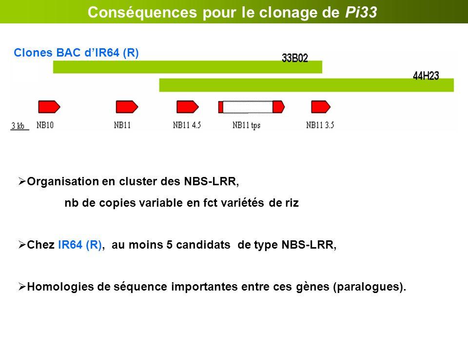 Conséquences pour le clonage de Pi33