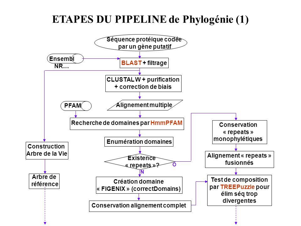 ETAPES DU PIPELINE de Phylogénie (1)