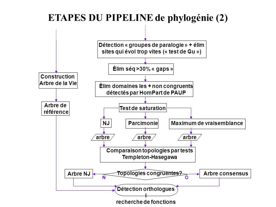 ETAPES DU PIPELINE de phylogénie (2)