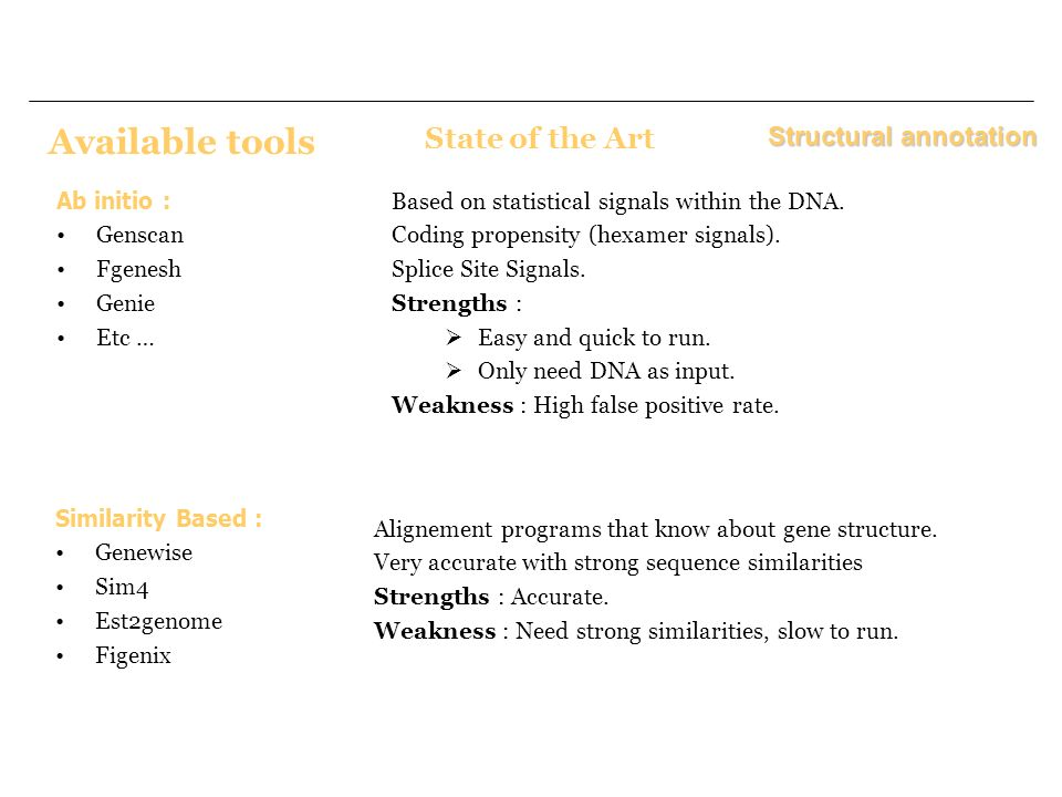 Available tools State of the Art Structural annotation Ab initio :