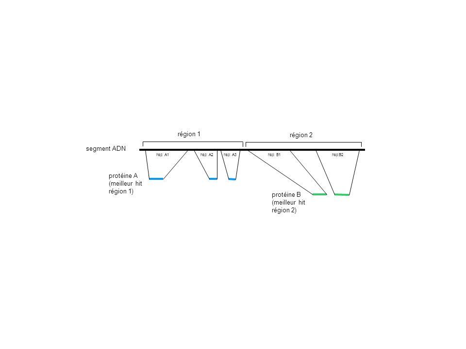 région 1 région 2 segment ADN protéine A (meilleur hit région 1)