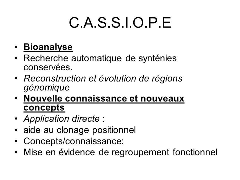 C.A.S.S.I.O.P.E Bioanalyse. Recherche automatique de synténies conservées. Reconstruction et évolution de régions génomique.