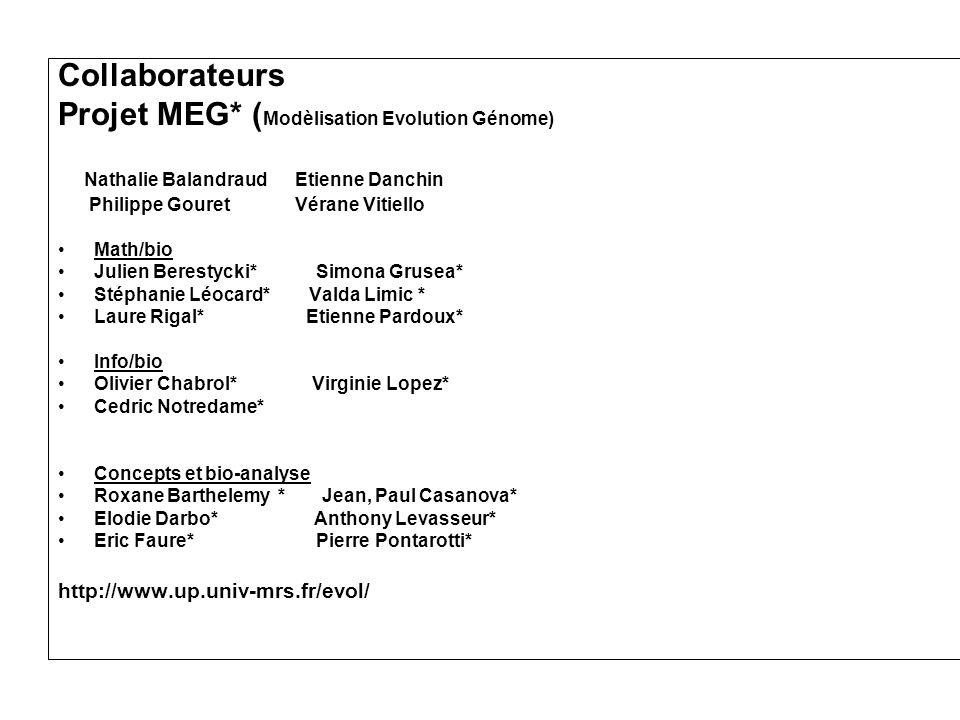 Projet MEG* (Modèlisation Evolution Génome)