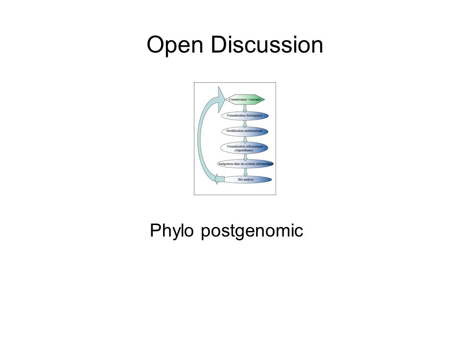 Open Discussion Phylo postgenomic