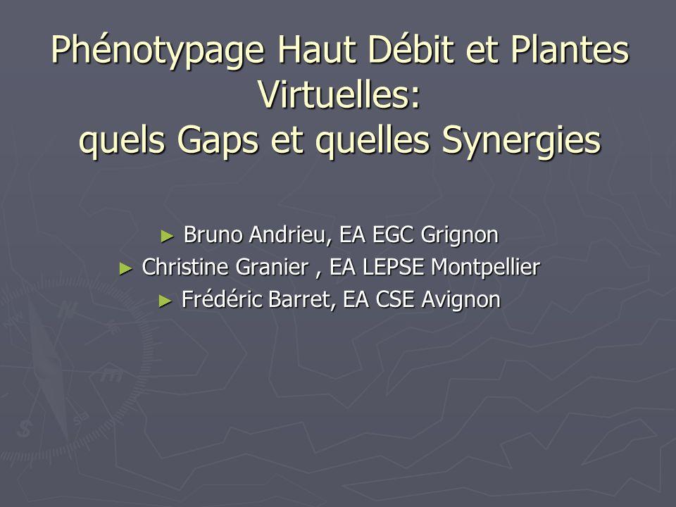 Phénotypage Haut Débit et Plantes Virtuelles: quels Gaps et quelles Synergies