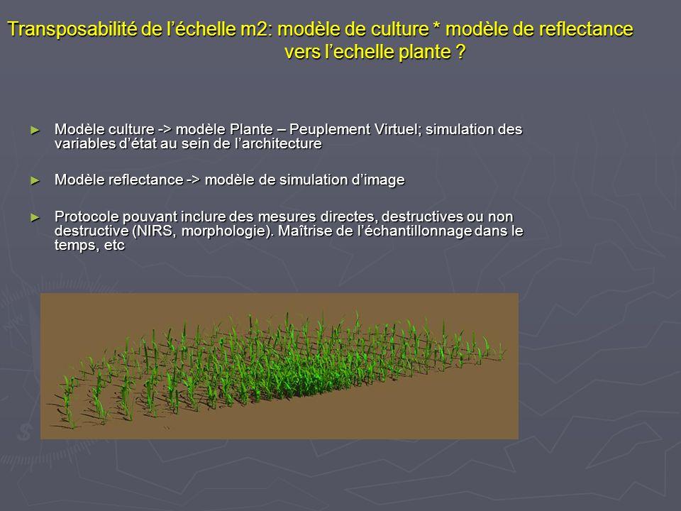 Transposabilité de l'échelle m2: modèle de culture