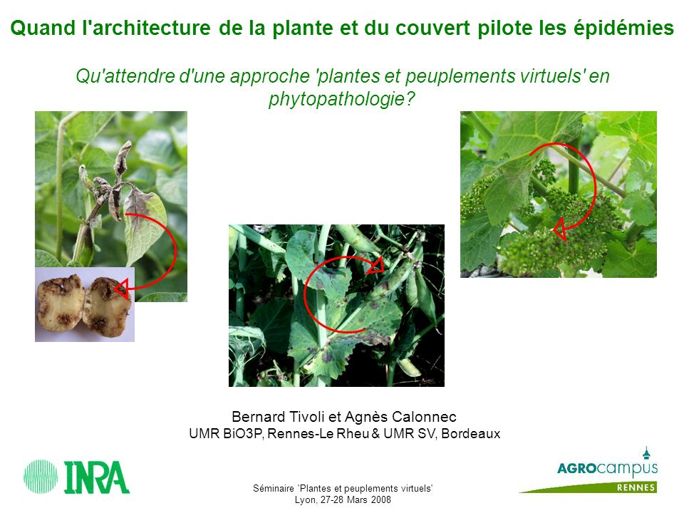 Séminaire Plantes et peuplements virtuels