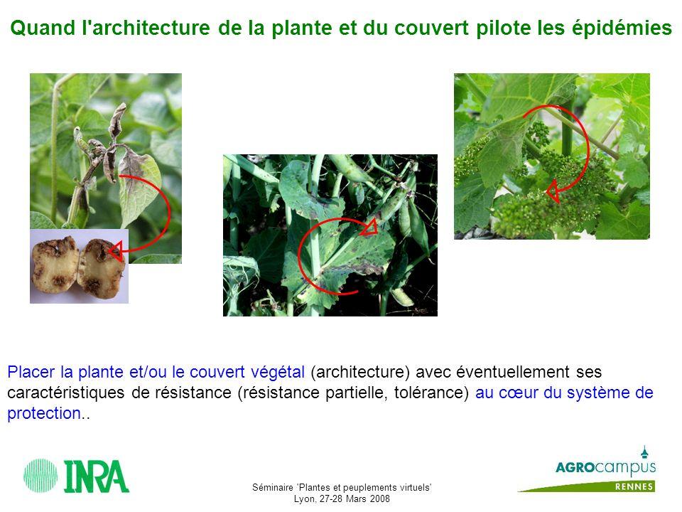 Quand l architecture de la plante et du couvert pilote les épidémies