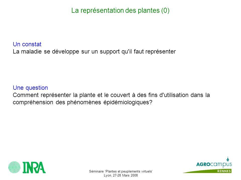 La représentation des plantes (0)