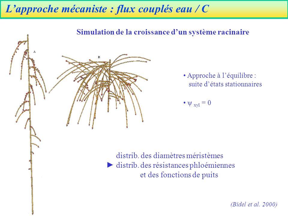 L'approche mécaniste : flux couplés eau / C