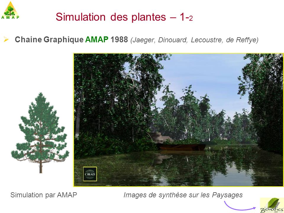 Simulation des plantes – 1-2