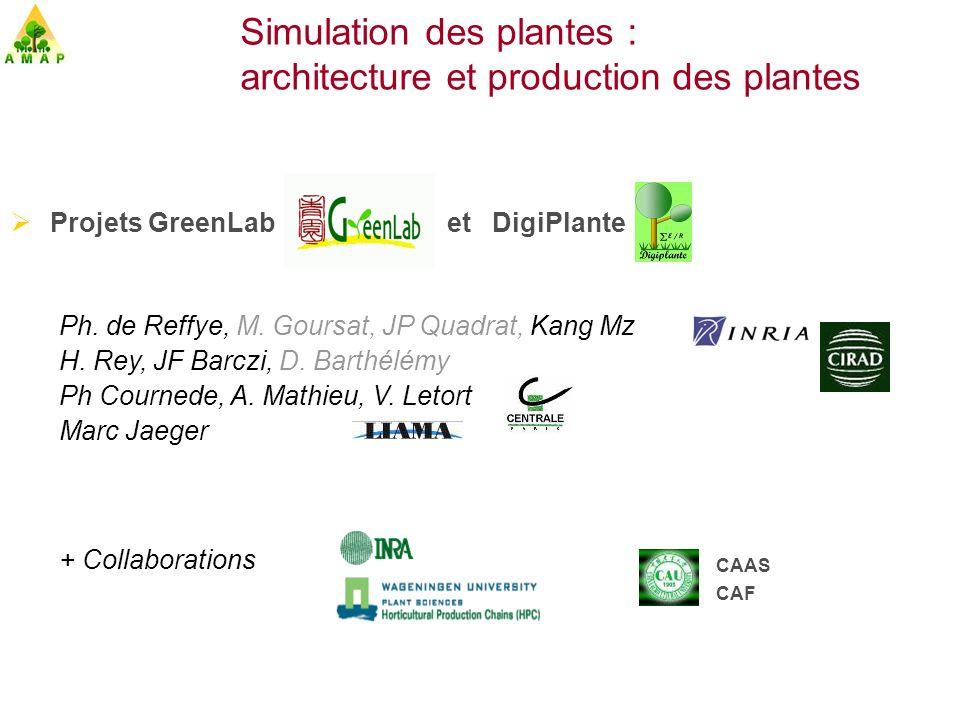Simulation des plantes : architecture et production des plantes