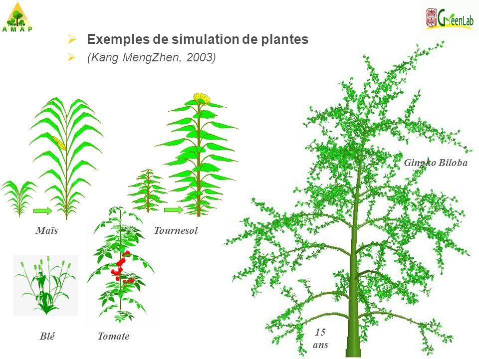 Exemples de simulation de plantes