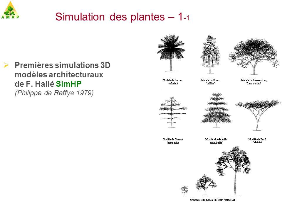 Simulation des plantes – 1-1