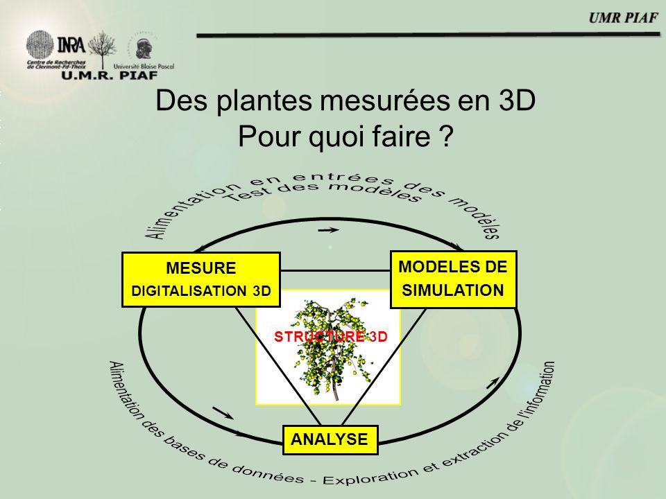 Des plantes mesurées en 3D Pour quoi faire