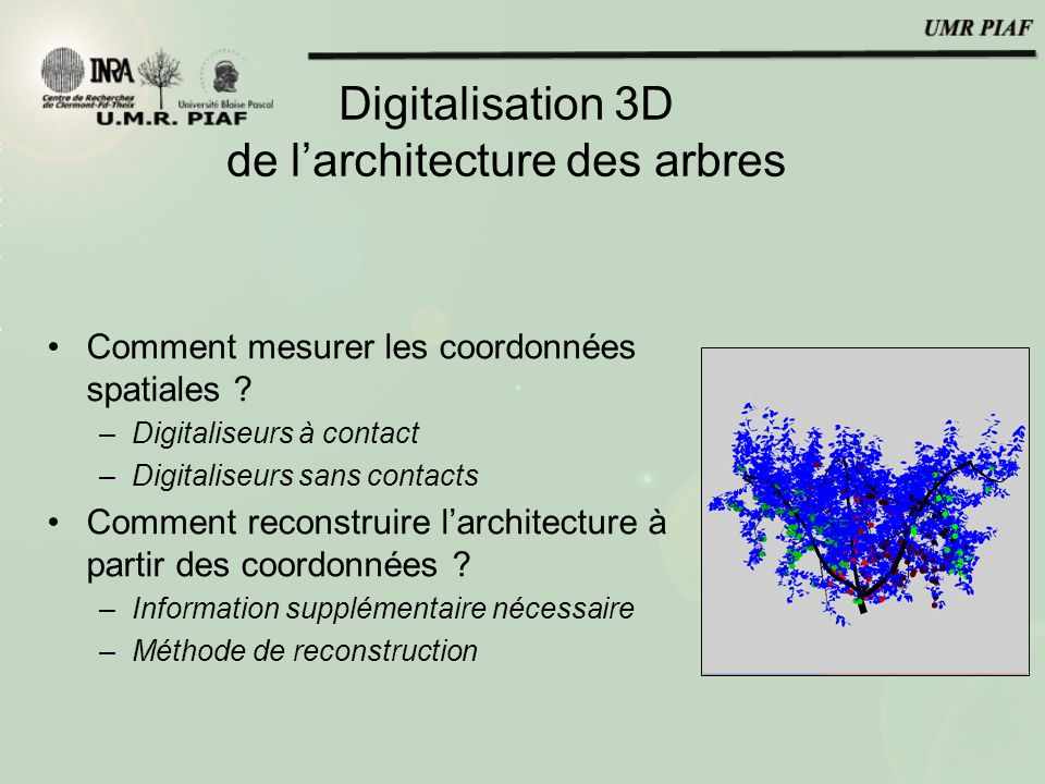 Digitalisation 3D de l'architecture des arbres