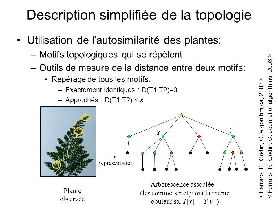 Description simplifiée de la topologie
