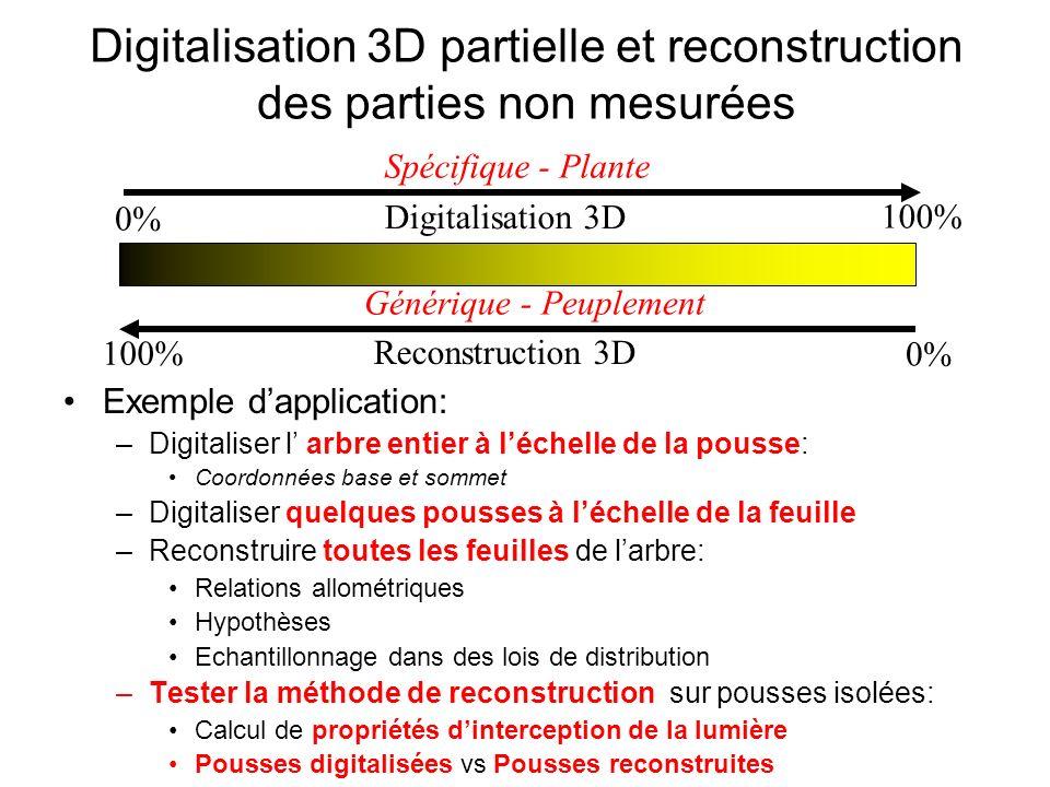 Digitalisation 3D partielle et reconstruction des parties non mesurées