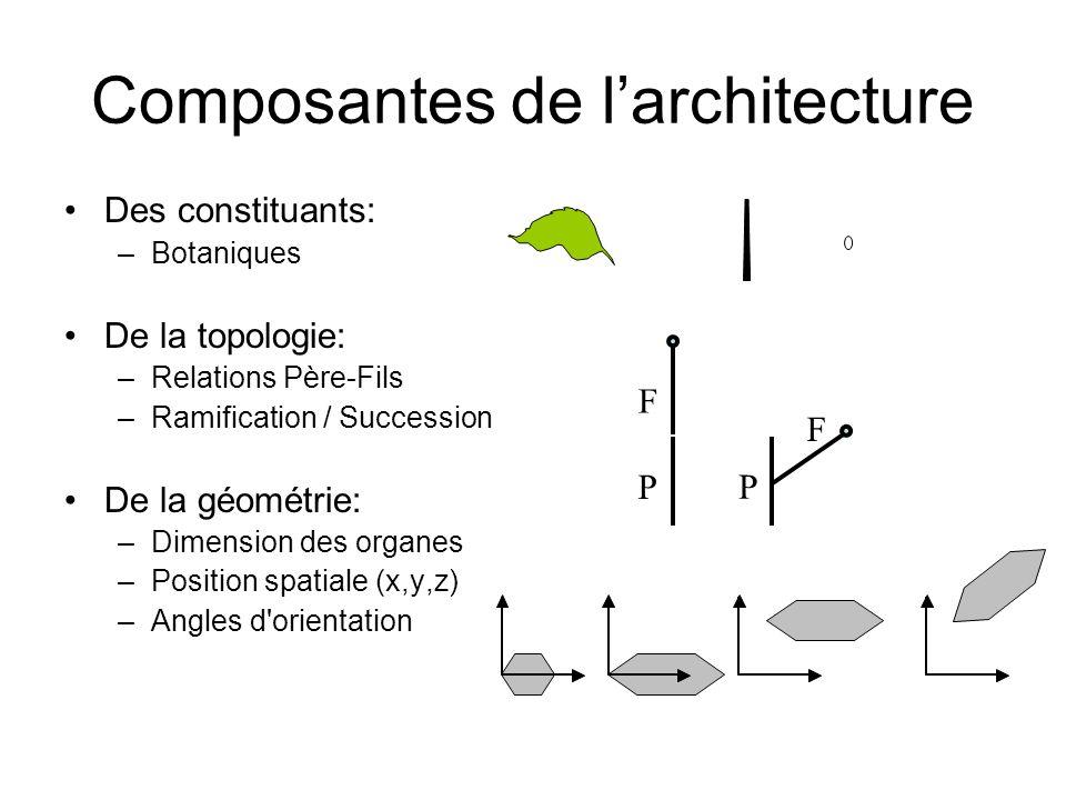 Composantes de l'architecture