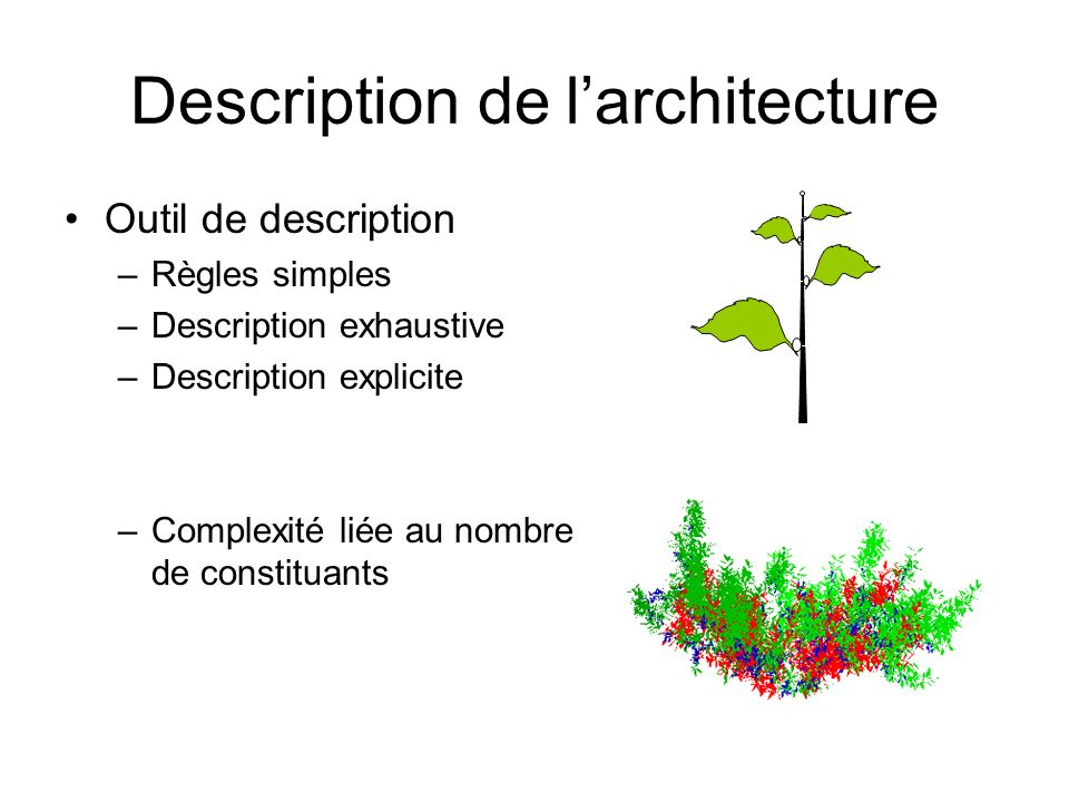 Description de l'architecture
