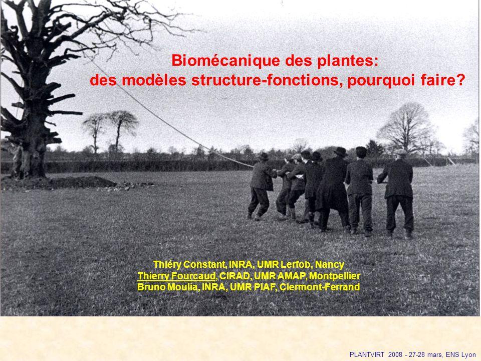 Biomécanique des plantes:
