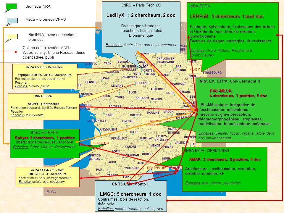 LadHyX , : 2 chercheurs, 2 doc LMGC: 5 chercheurs, 1 doc