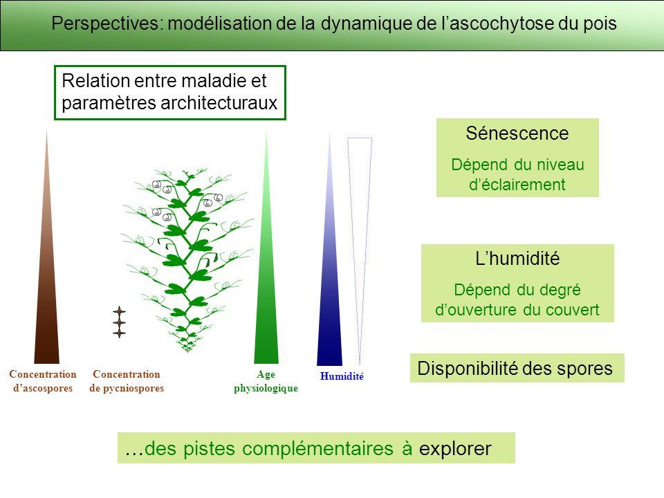 Concentration d'ascospores Concentration de pycniospores