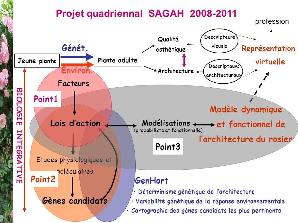 Projet quadriennal SAGAH 2008-2011