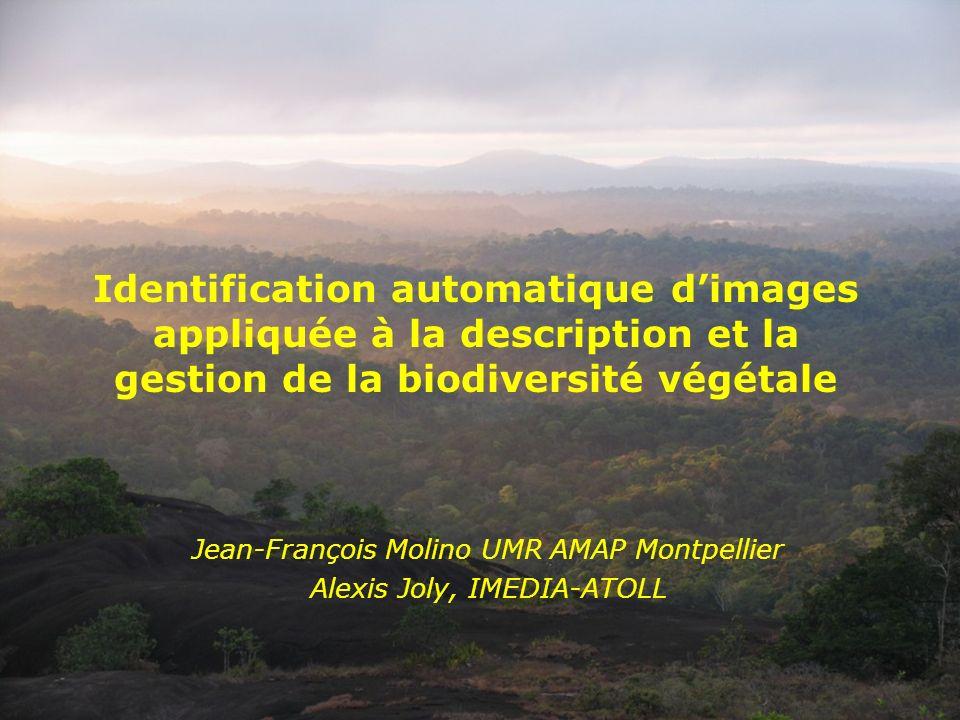 Identification automatique d'images appliquée à la description et la gestion de la biodiversité végétale