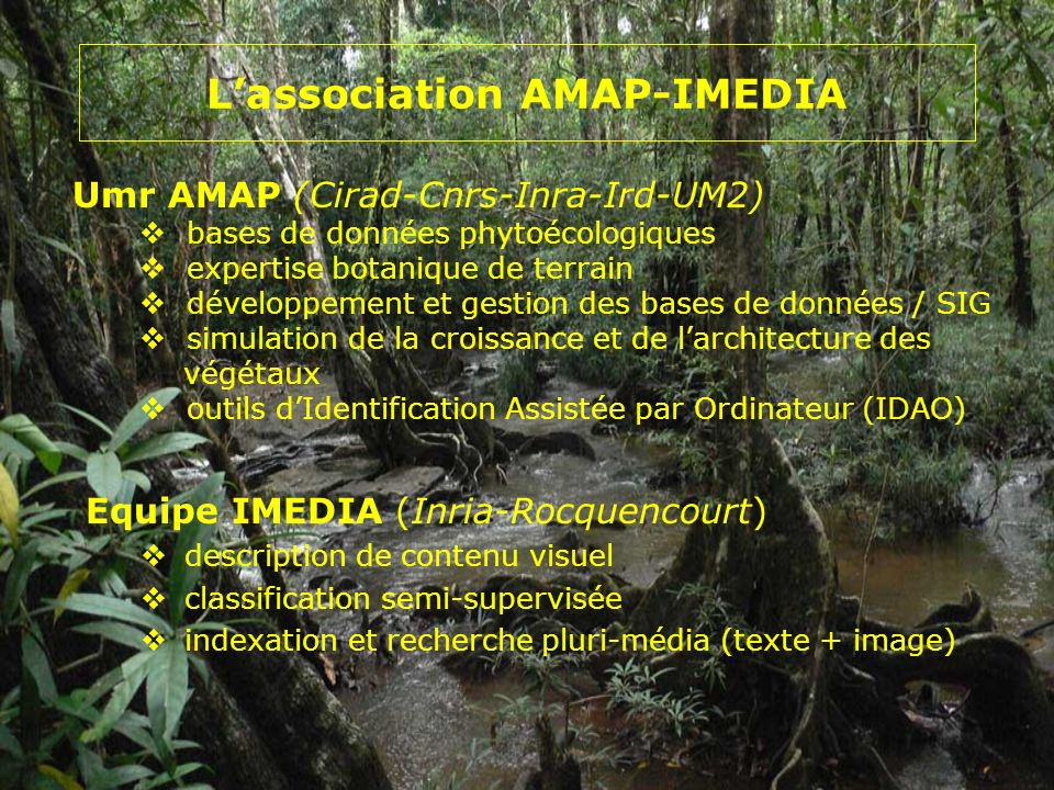 L'association AMAP-IMEDIA