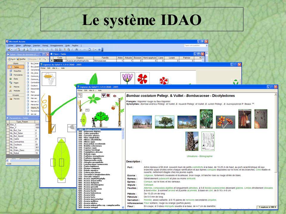 Le système IDAO