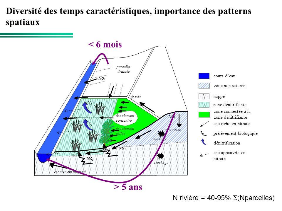 Diversité des temps caractéristiques, importance des patterns spatiaux
