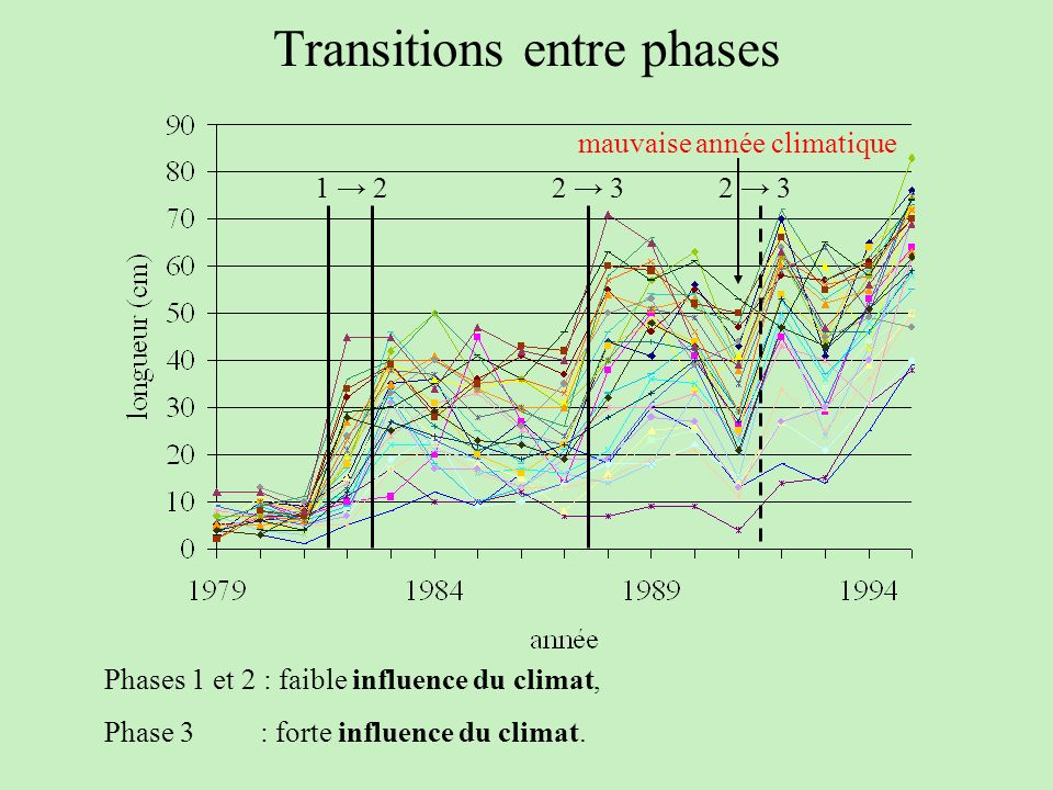 Transitions entre phases