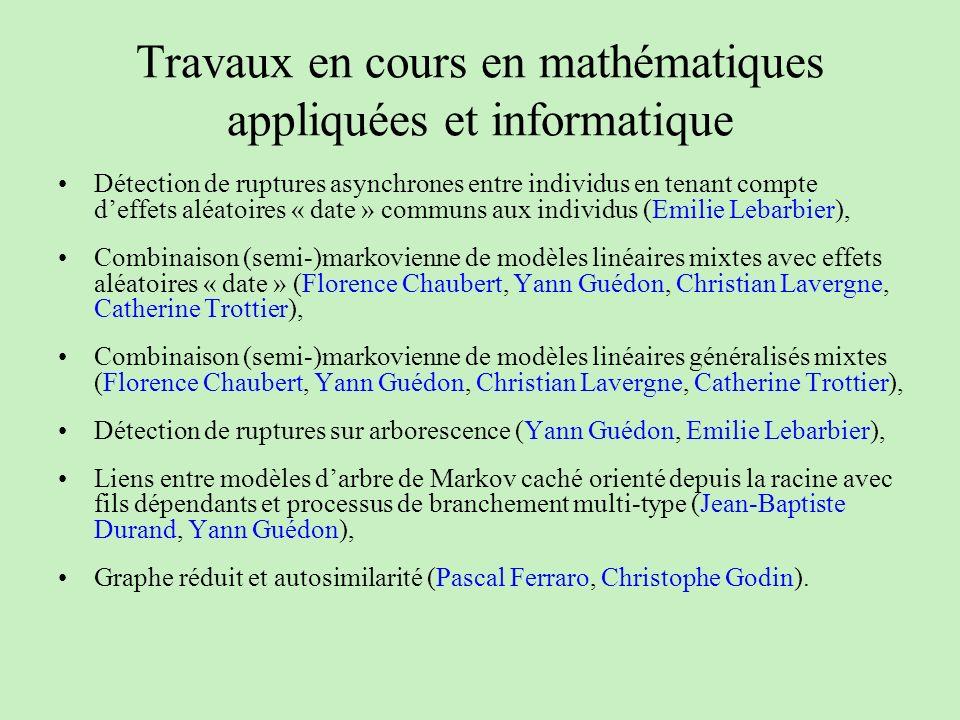 Travaux en cours en mathématiques appliquées et informatique