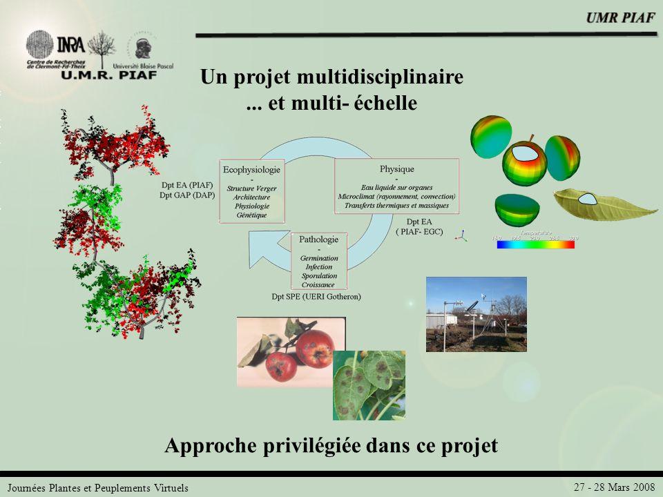 Un projet multidisciplinaire