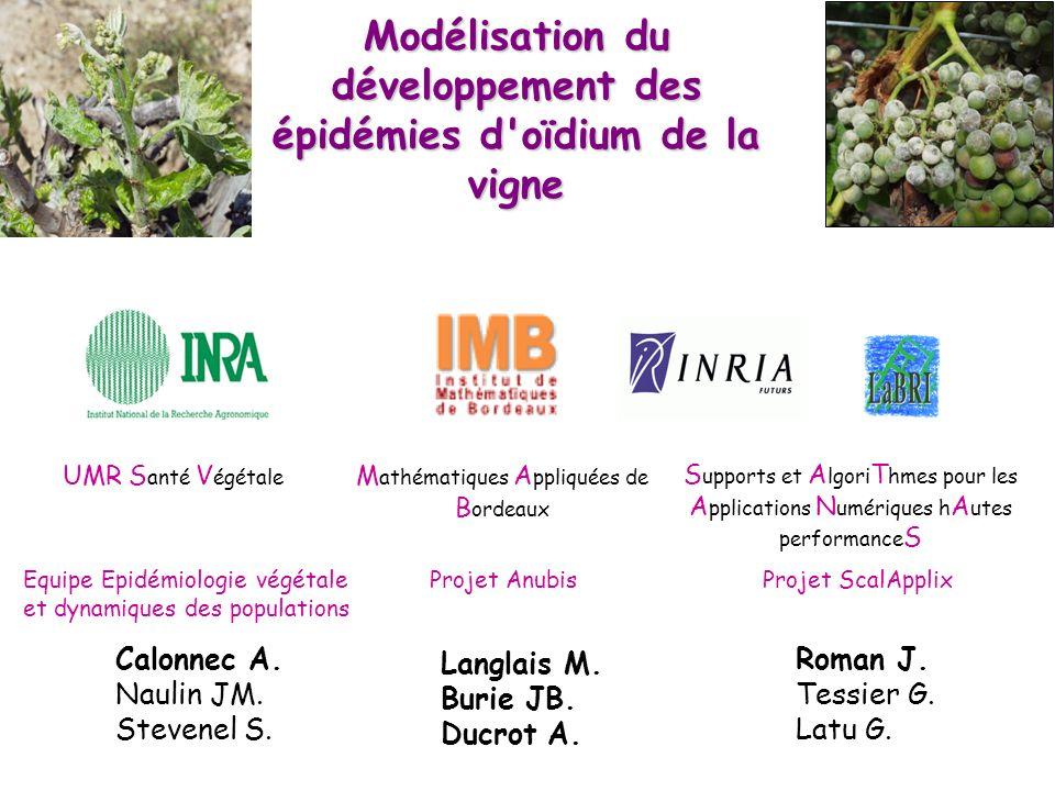 Modélisation du développement des épidémies d oïdium de la vigne