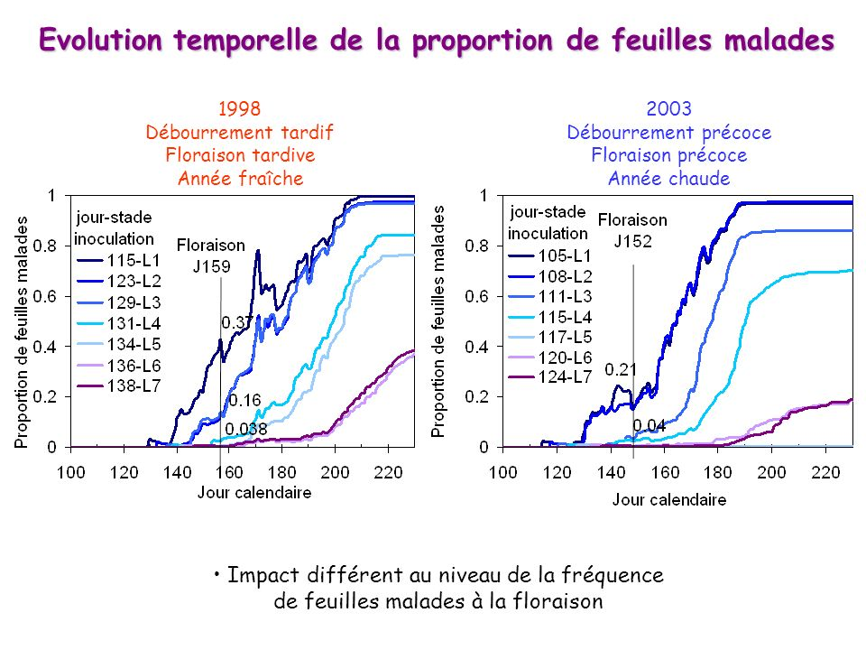 Evolution temporelle de la proportion de feuilles malades
