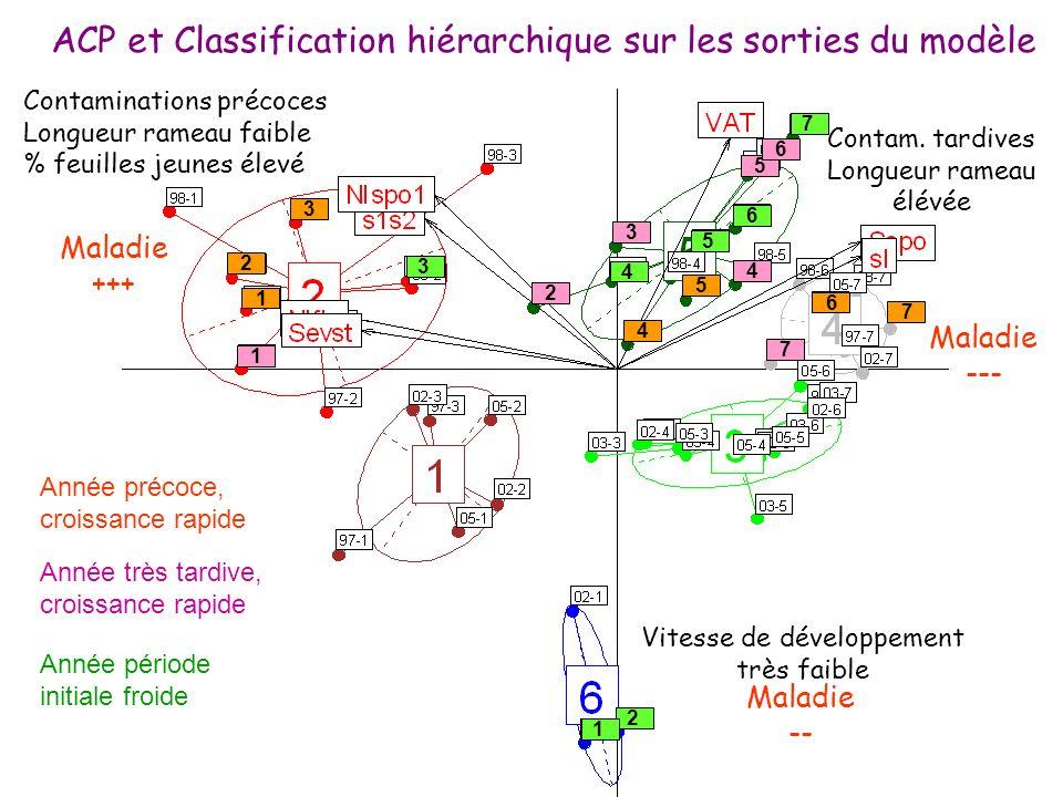 ACP et Classification hiérarchique sur les sorties du modèle