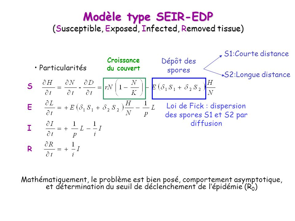 Modèle type SEIR-EDP (Susceptible, Exposed, Infected, Removed tissue)