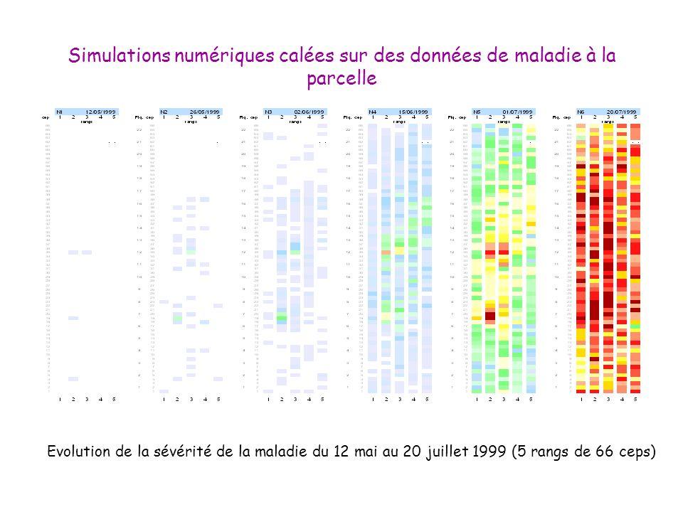 Simulations numériques calées sur des données de maladie à la parcelle